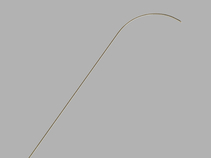 Pakter Curved Needle